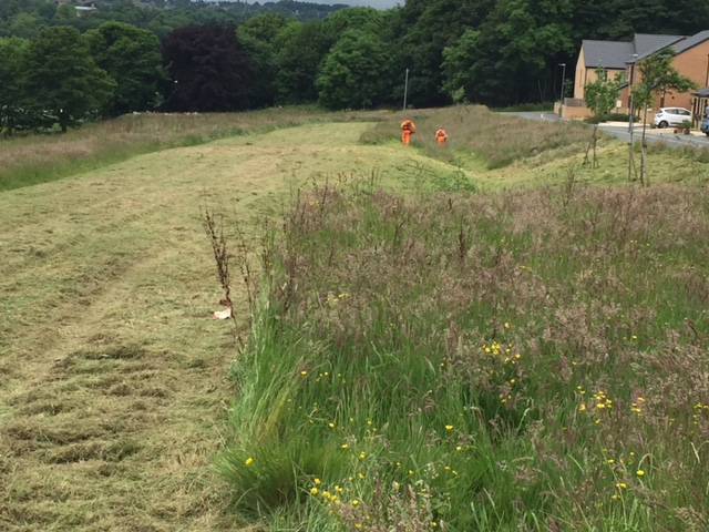 Grass Cutting: Bradford